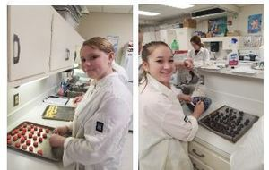 Hemlock Culinary Students Do it Again!